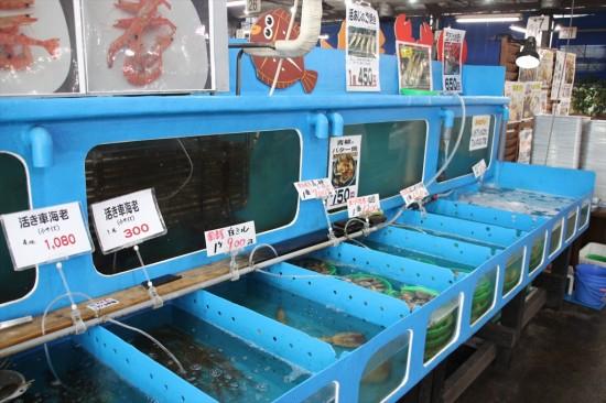 木更津の厚生水産は車海老の養殖、発祥の地。大きな車海老は「活き活き亭」の名物でもある