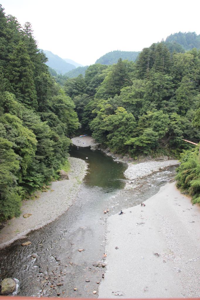 氷川キャンプ場すぐ側の「昭和橋」から眺める多摩川