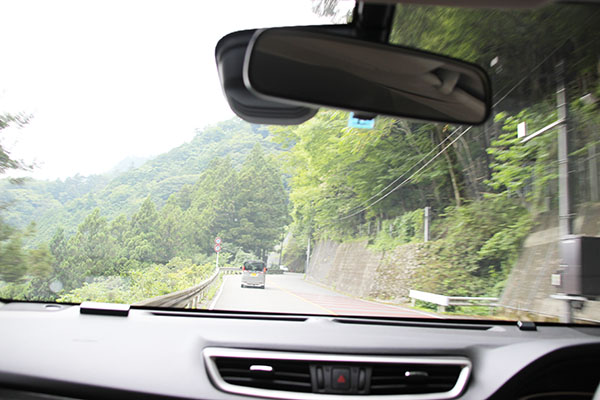 緑の中を走るドライブは気持ちいい!