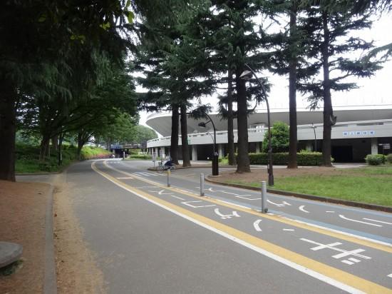 ジョギングコースやサイクリングコースが整備されています
