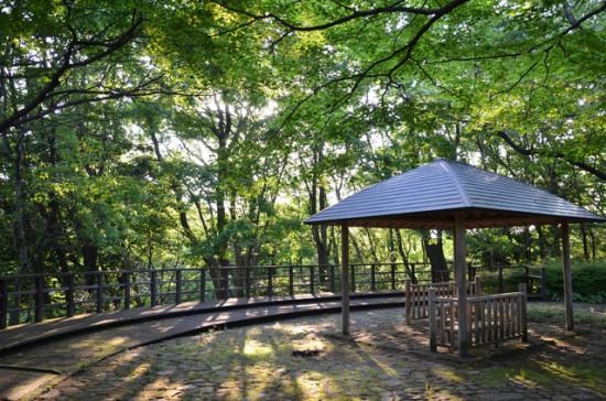 自然の中でリフレッシュできる生田緑地