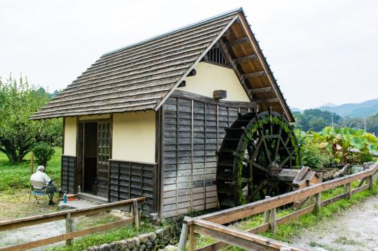 巾着田内の水車小屋