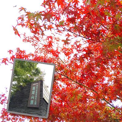 高尾山山頂では紅葉が始まっていた