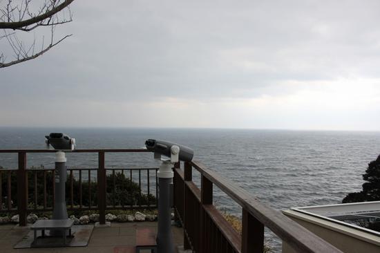 あいにくの曇り空でしたが、江ノ島の頂上から望む景色は格別!