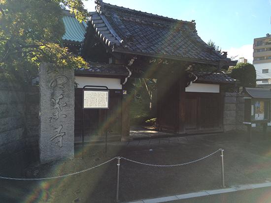 「金剛寺」の門前にカエデが見える