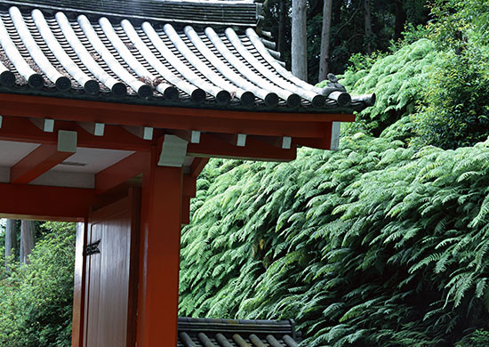 千葉県には歴史ある有名なパワースポットがある
