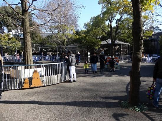 動物園にはふれあいコーナーもあります