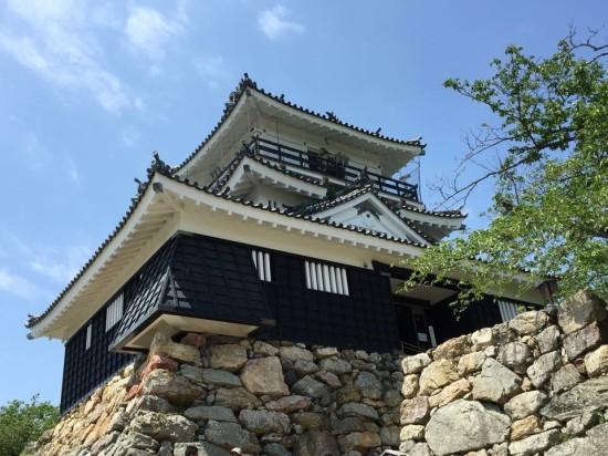 浜松城周辺は公園になっていて散策も楽しかったです