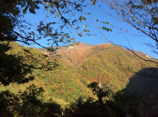 朝の南アルプスの眺め。山の上のほうはもっと紅葉が鮮やかでした