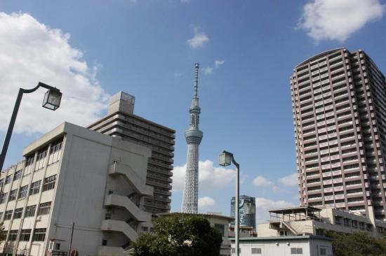 ビルの間にスクッとそびえる東京スカイツリー