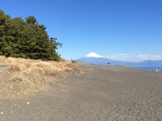 この富士山が見たかった!ようやくご対面です