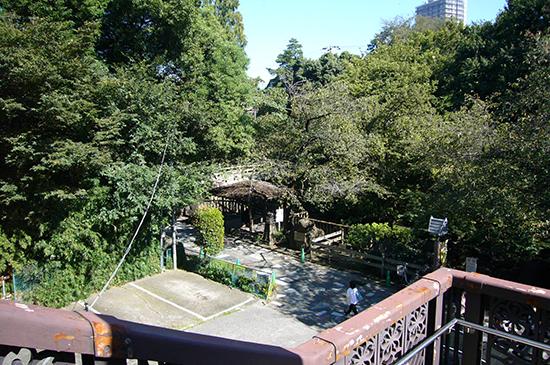 王子神社そばの階段を下ると「音無親水公園」があります