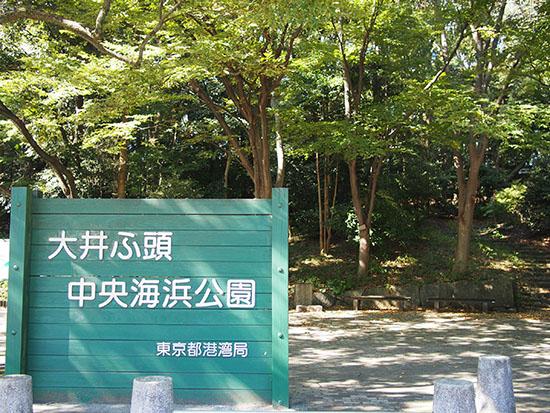 「なぎさの森」の入口