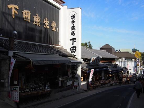 成田山新勝寺山門へ続く表参道