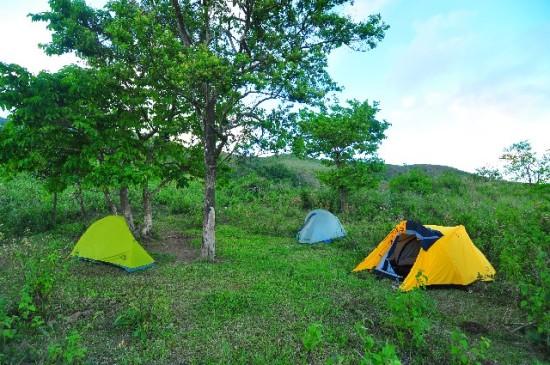 自然の中でキャンプを楽しもう