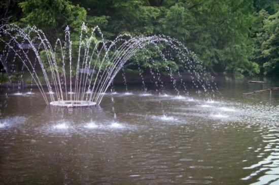 大宮公園の噴水を見ながら一休み