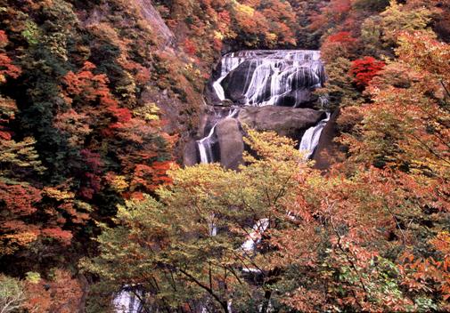 紅葉の時期も美しいですが、どの季節に行っても美しいのが特徴