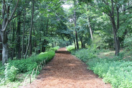 赤城自然園で森林セラビー