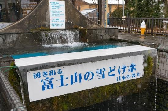 忍野八海の湧き水には実際に触れられる。汲んで持ち帰ることもできる