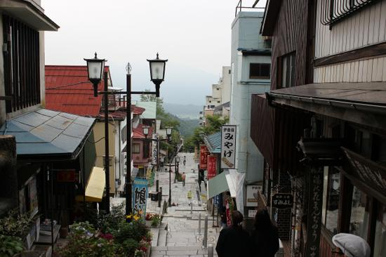 石段は降りていくときの景色が最高!遠くに榛名山が見えます。