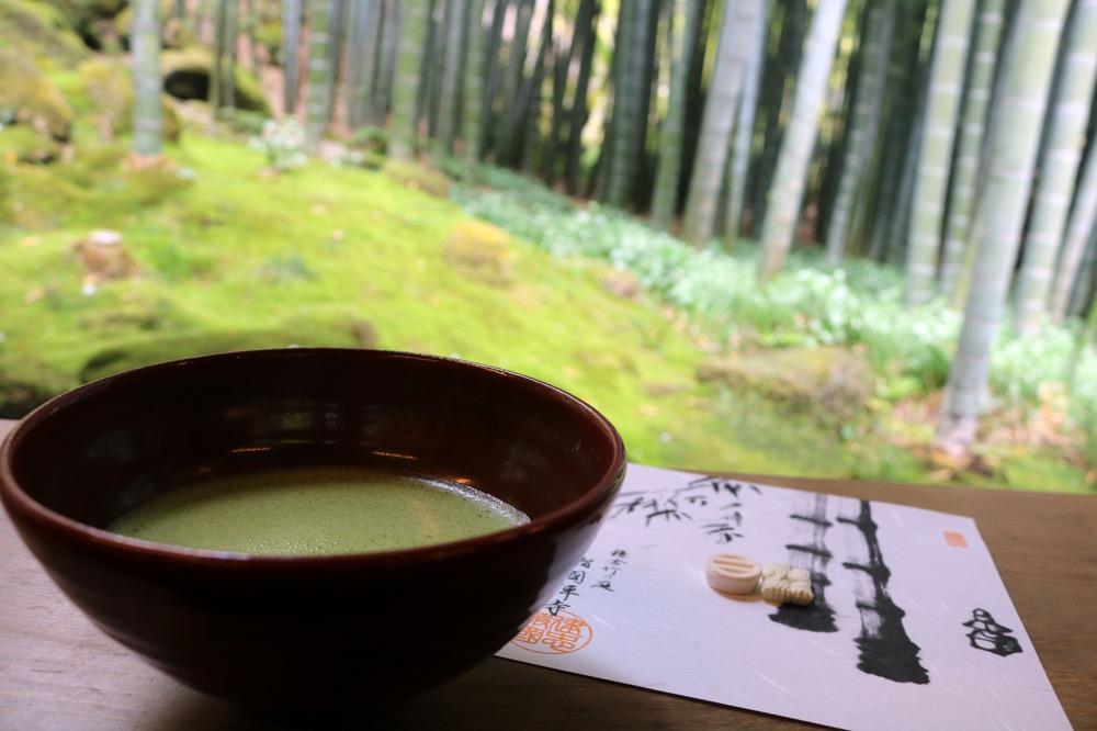 抹茶に添えられたお茶うけの砂糖菓子、敷紙も雰囲気づくりに一役買っている