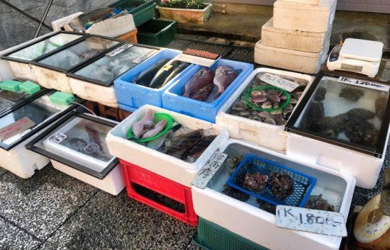 水揚げされたばかりの新鮮な魚介類