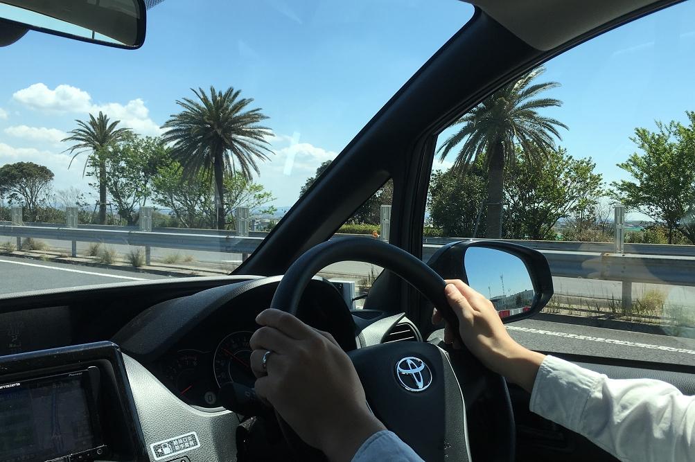 館山自動車道脇にはフェニックスが植えられており、南国を走行している気分が味わえる