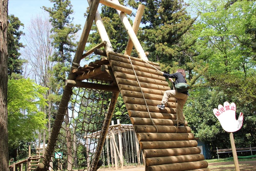 丸太や縄で組まれたポイントを登ったり降りたりする