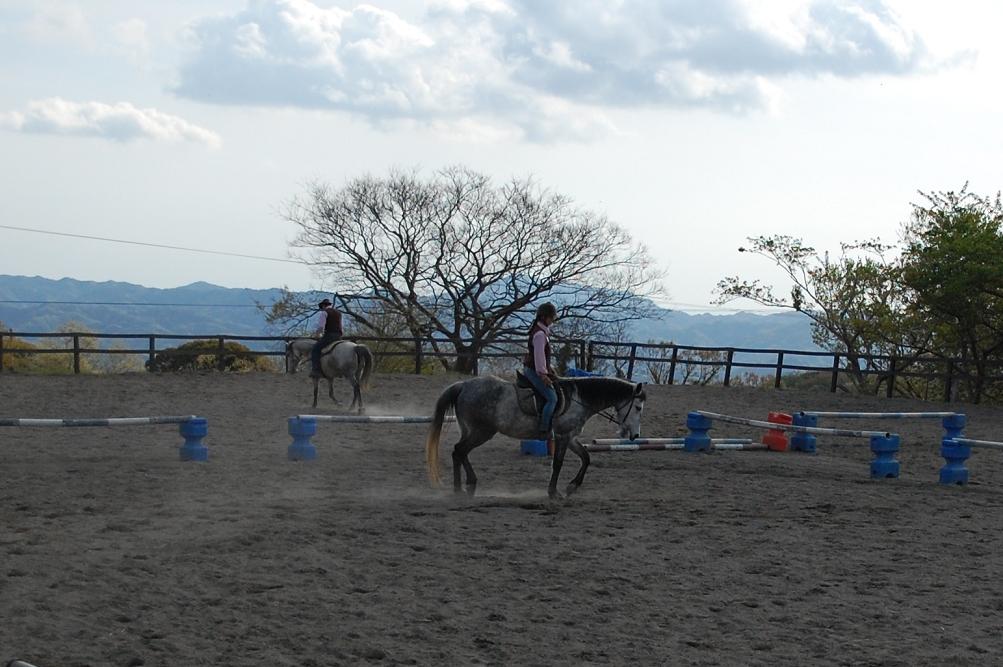 「うまの牧場」エリアでは乗馬を体験することもできる