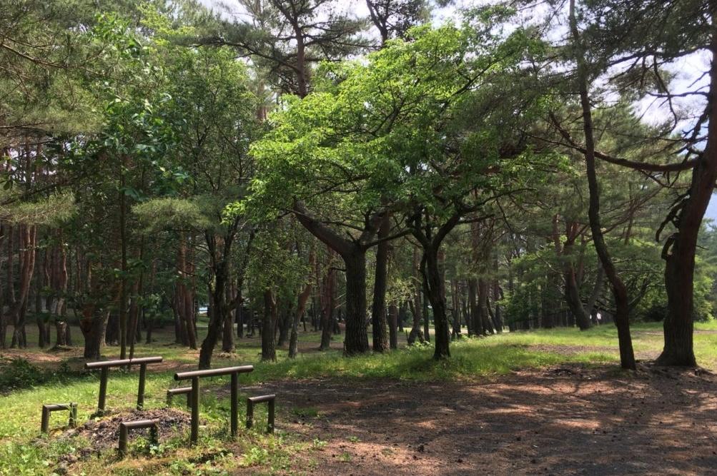 「西湖」、「本栖湖」の周辺には沢山のキャンプ場があり、オートキャンプやBBQを楽しめる