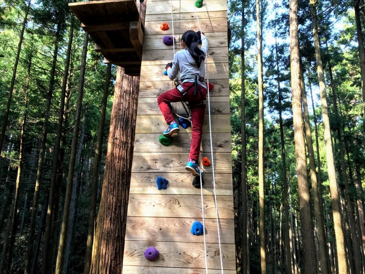 ボルダリングで木の上へ