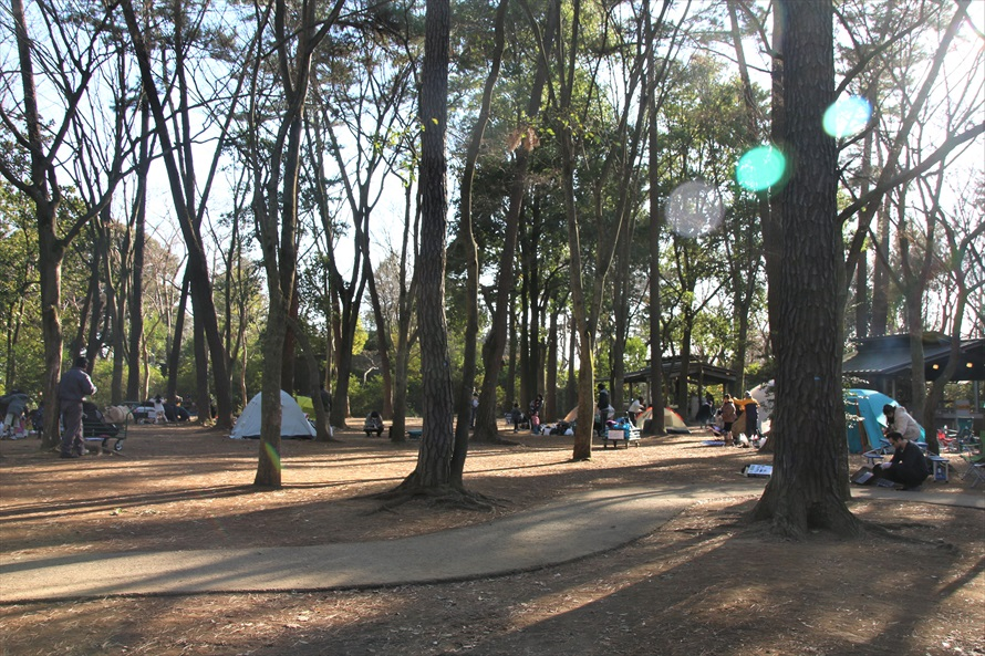 テントを張り思い思いのキャンプスタイルを楽しむ