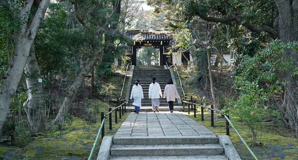 京都御所にゆかりのある高麗門「聖門」