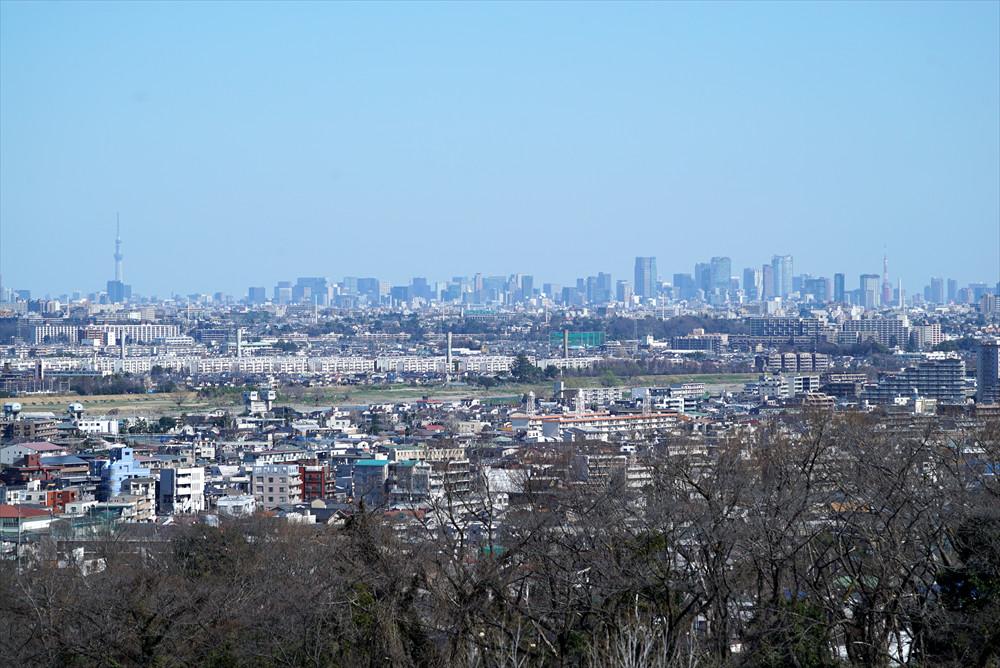 都心の高層ビル群まで見渡せる「空見の丘」からの景色