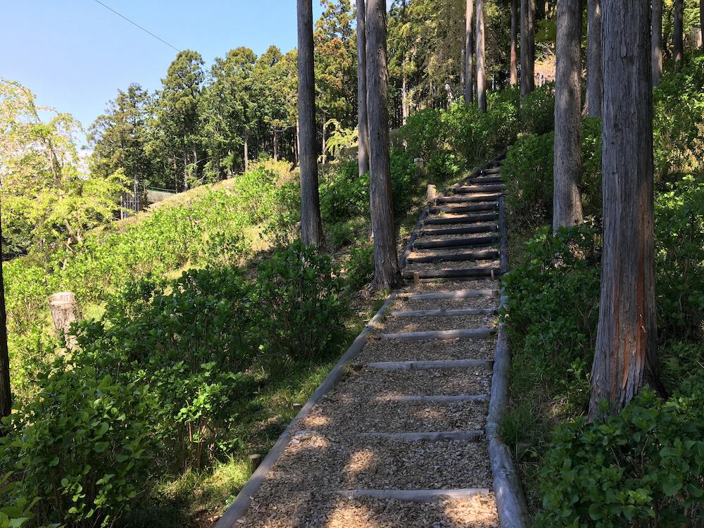 「Kicoroの森」は、足元がウッドチップになっているので、小さい子どもでも歩きやすい
