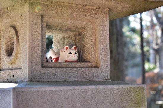 灯籠の中からも招き猫が覗く