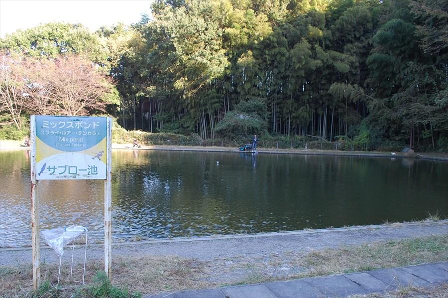 ポンドの周囲はおよそ150メートル、最深部は3.5メートルと、やや小ぶりな「サブロー池」は初心者優先