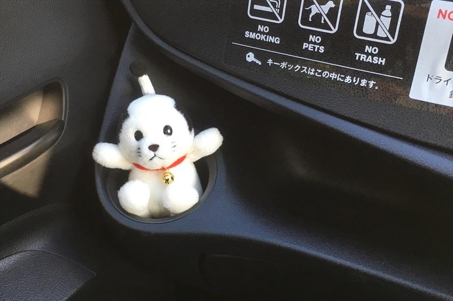 江戸ワンダーランドで購入した「ニャンまげぬいぐるみ」をお供に、日光市内のドライブへ出発!