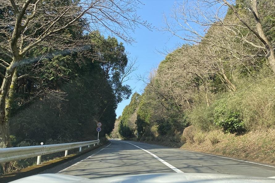 小田原料金所より1kmから4kmの区画は、道路脇に5,000株ものあじさいが植えられ「あじさいレインボーロード」と呼ばれる。見頃は初夏