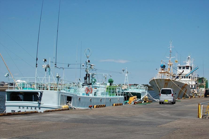 到着がお昼前だったこともあり、漁港はどこかのんびりとした雰囲気だった