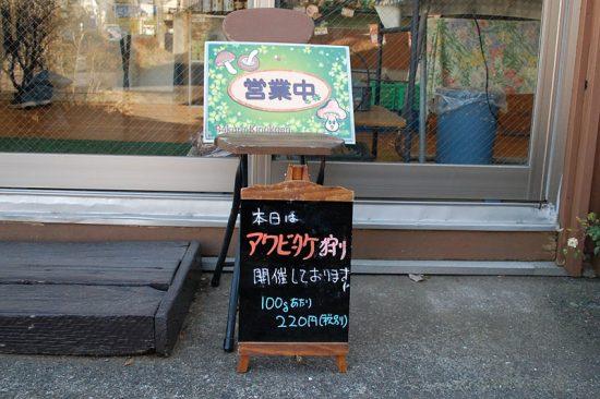 アワビタケは炒めてもおいしく、とてもおいしいお出汁がでるので煮物にも適しています