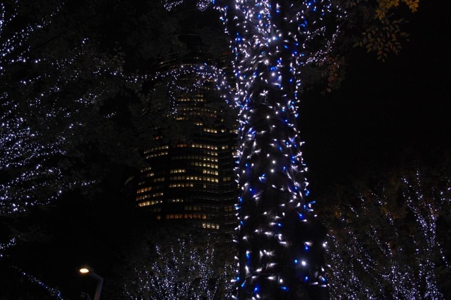 12月25日(日)までの開催で、点灯時間は17時から23時まで。期間中、六本木ヒルズではクリスマスマーケットなども行われる