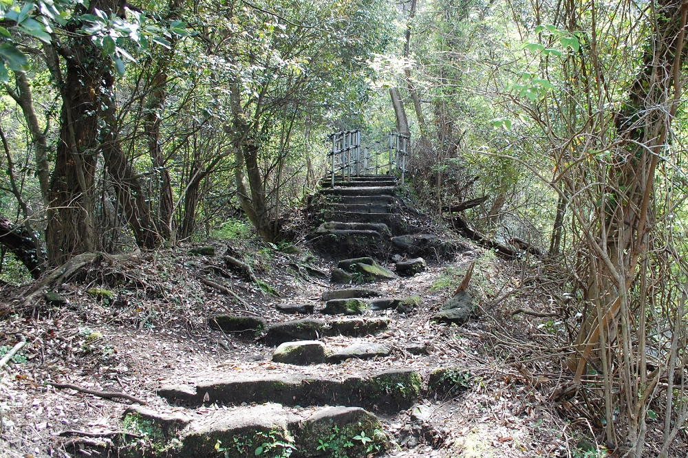 山歩きコースの階段は急勾配のうえ滑りやすい。歩きやすい格好で行くのがおすすめ