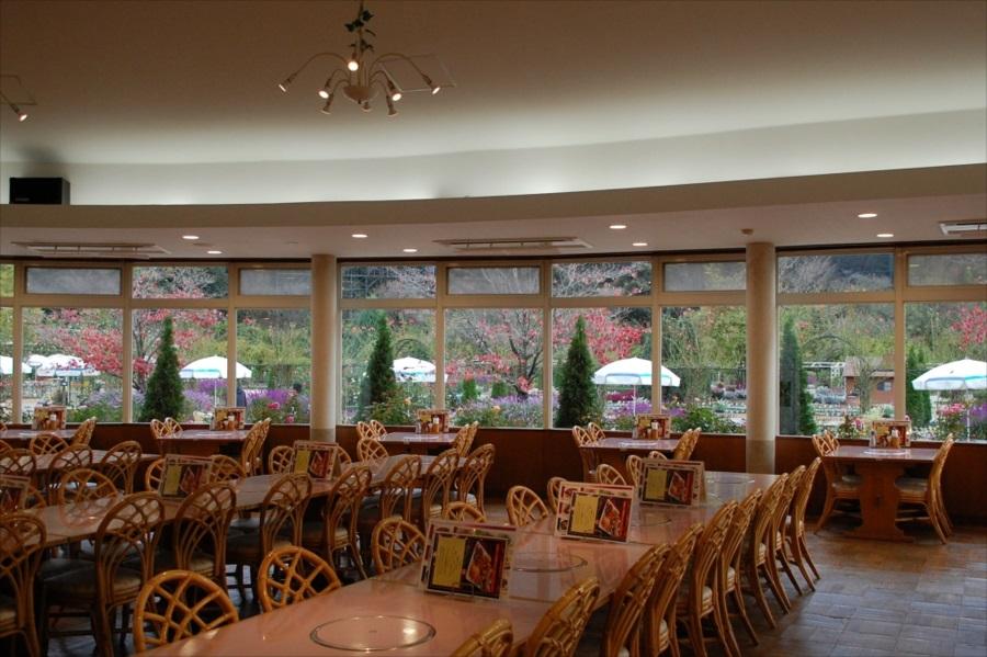 レストラン「ウェステリア」では、園内の景色を楽しみながら食事ができる
