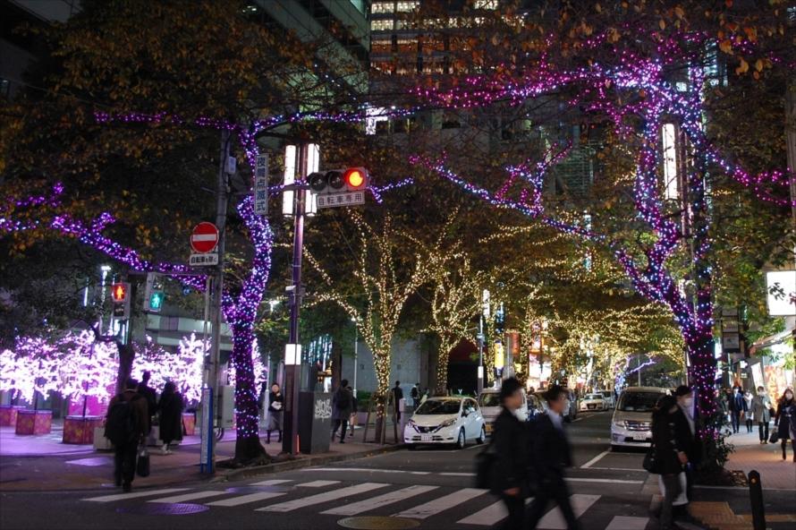 さくら通り(外堀通り~昭和通り西側通)、八重洲仲通り、各町会街路灯にイルミネーションが設置される
