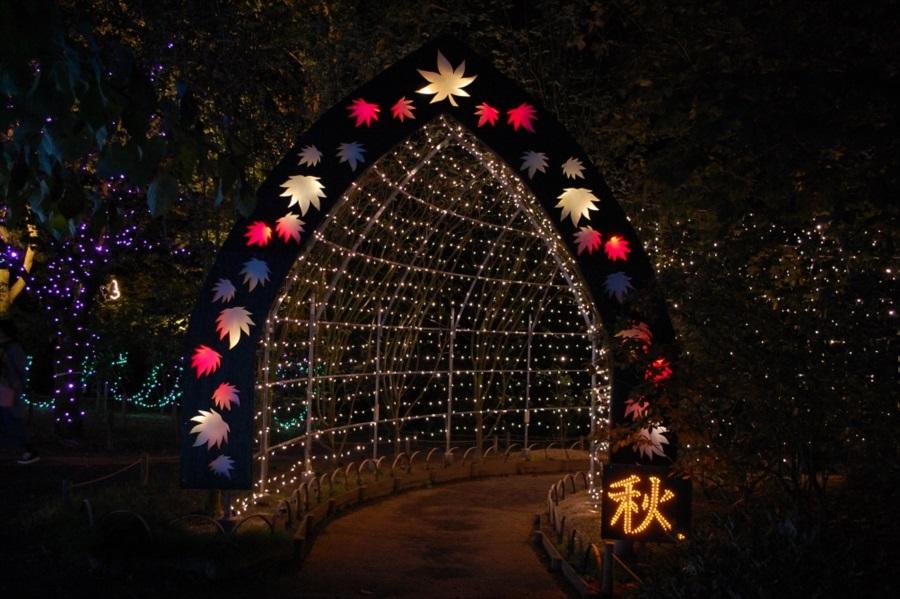 日本の四季 こころの故郷」にある春夏秋冬のゲート。こちらは秋
