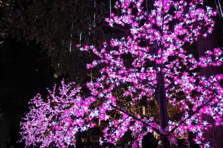 イルミネーションをよく見てみると、一つひとつが桜の中のようになっていた