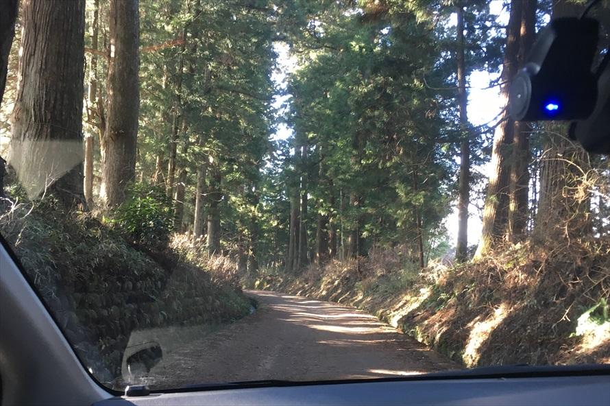 クルマで通れる場所もある。ここで「日光街道杉並木まつり」や「杉並木マラソン」などの催しも行われている