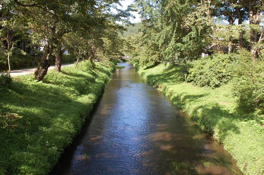 湧水は桂川に集まり、山中湖へと注がれる