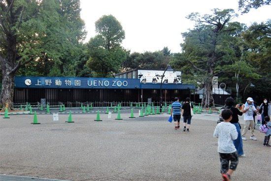 上野恩賜公園と言えばやっぱり「上野動物園」